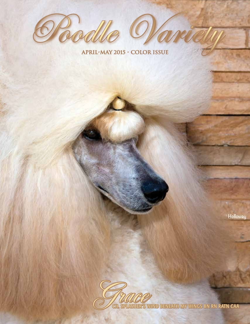Poodle Variety April-May 2015