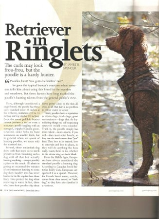 """Retriever in Ringlets"" featured article in June/July 2011 Gun Dog Mag."